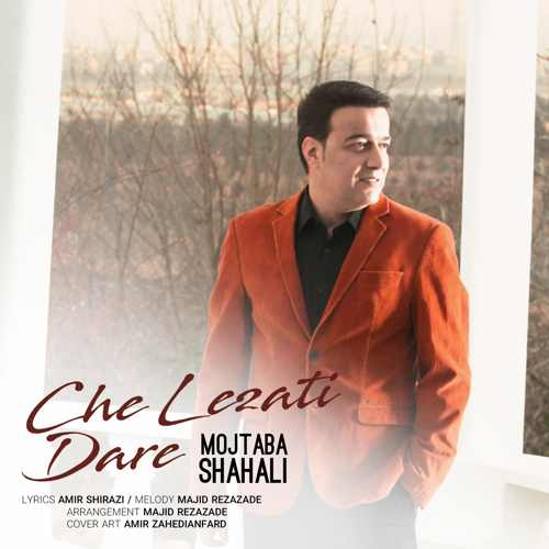 دانلود موزیک جدید چه لذتی داره از مجتبی شاه علی