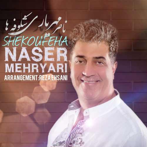 دانلود موزیک جدید شکوفه ها از ناصر مهریاری