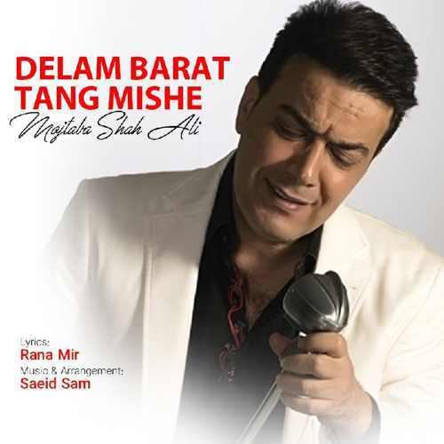 دانلود موزیک جدید دلم برات تنگ شده از مجتبی شاه علی