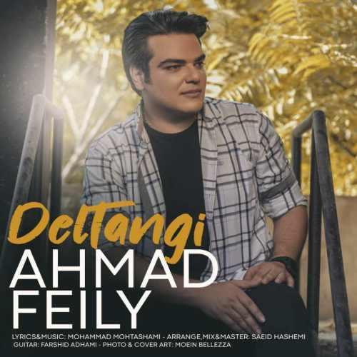 دانلود موزیک جدید دلتنگی از احمد فیلی