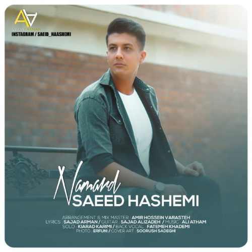 دانلود موزیک جدید نامرد از سعید هاشمی
