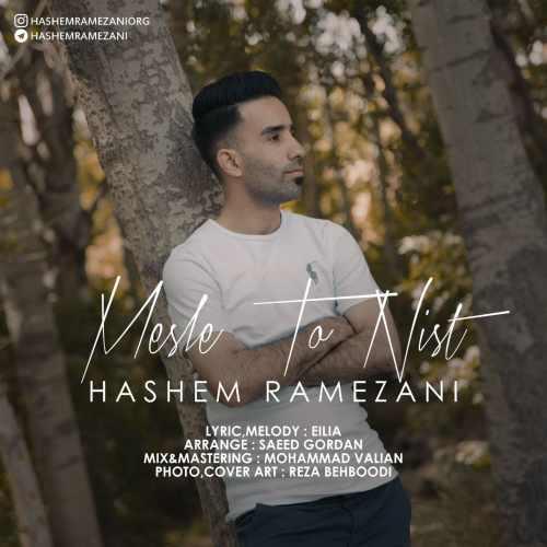 دانلود موزیک جدید مثل تو نیست از هاشم رمضانی
