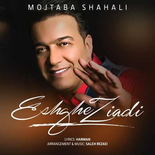 دانلود موزیک جدید عشق زیادی از مجتبی شاه علی