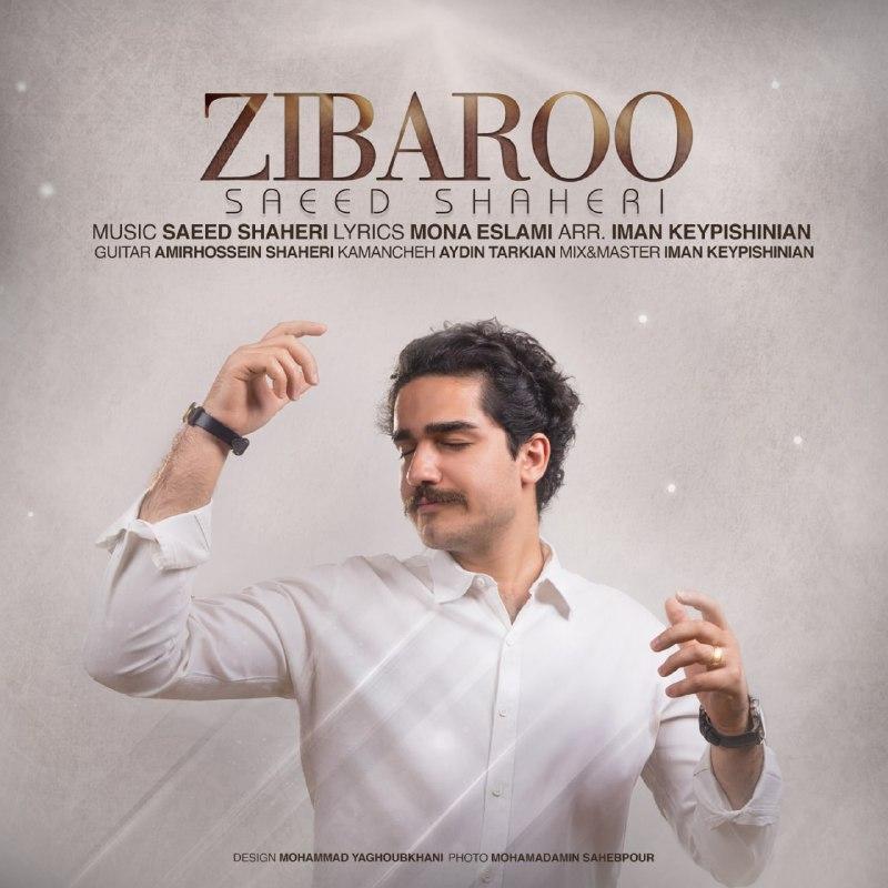 دانلود موزیک جدید زیبارو از سعید شاهری