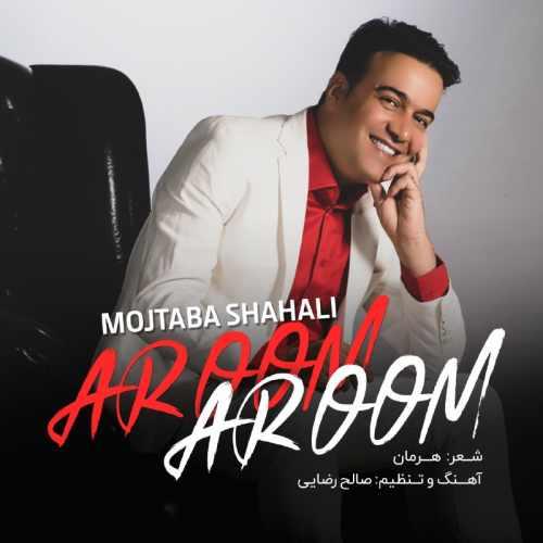 دانلود موزیک جدید آروم آروم از مجتبی شاه علی