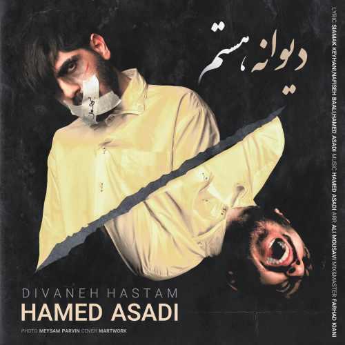 دانلود موزیک جدید دیوانه هستم از حامد اسدی