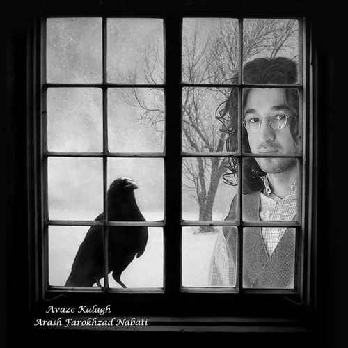 دانلود موزیک جدید آواز کلاغ از آرش فرخزاد نباتی
