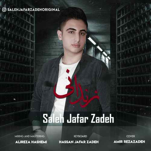دانلود موزیک جدید زندونی از صالح جعفرزاده