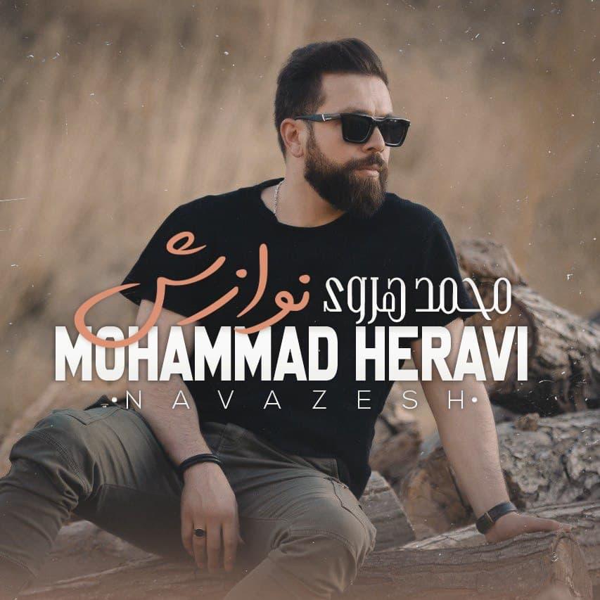 دانلود موزیک جدید نوازش از محمد هروی