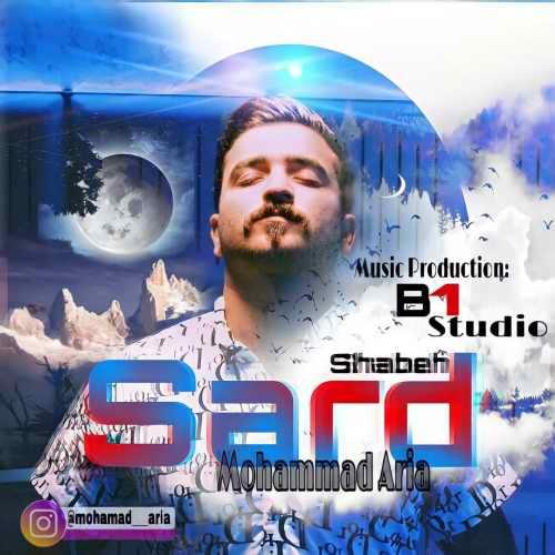 دانلود موزیک جدید شب سرد از محمد آریا