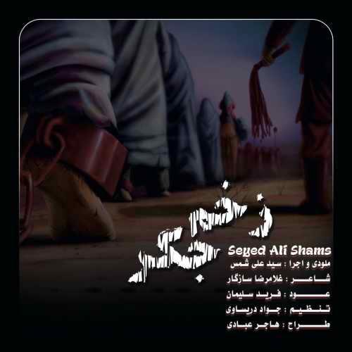 دانلود موزیک جدید زخم جگر از سید علی شمس